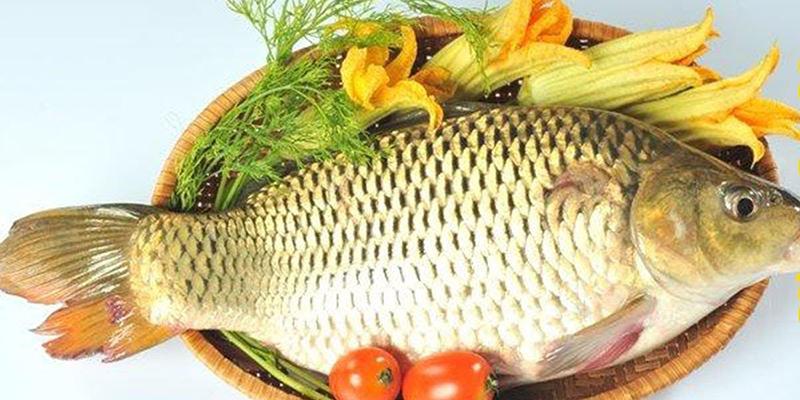 Thịt cá chép có tác dụng tăng cường sinh lý cho nam giới